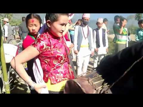 Chandi Sakela dance of Kirati Lohorung People