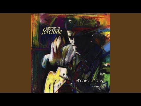 Antonio Forcione - The Long Winter mp3 indir