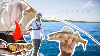 SUCKER FISH vs PERCH Catch & Cook | Live Worm Bottom Fishing