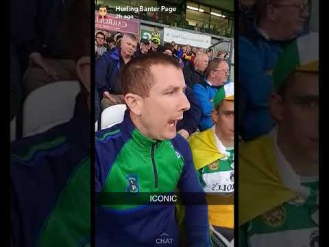Buff Egan report on Offaly vs Wexford at Tullamore