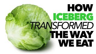 How Iceberg Lettuce TRANSFORMED the Way We Eat