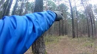 Эндуро по лесу на мопеде I irbis BWS 150 I Едет лучше пит байка I
