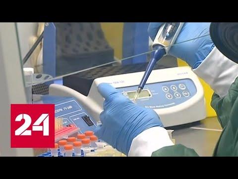 ВОЗ: новый коронавирус распространяется пугающими темпами - Россия 24