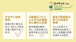 新規水稲用中後期除草剤 ロイヤント™乳剤の除草効果
