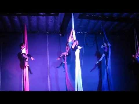 Aerial Group Silks (Aerial Revolution)
