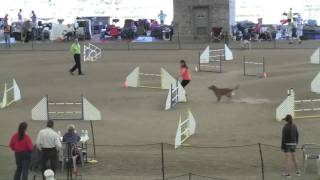 Terri And Edge Ex Jumpers 4-30-11