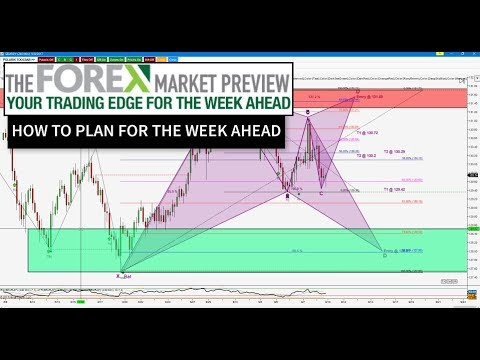 Forex plan week