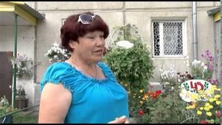 Людмила Токарская - победитель городского конкурса на лучшее цветочно-декоративное озеленение.(Красота неописуемая – жительница микрорайона