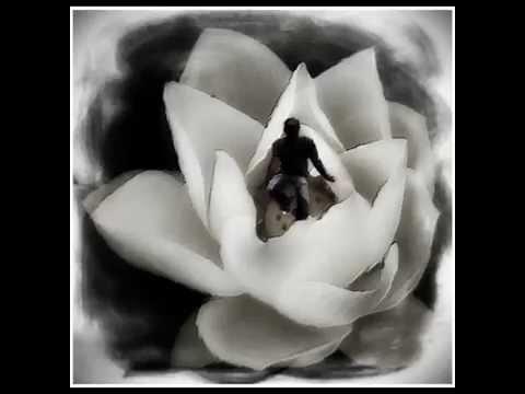 Deva Premal And Miten Strength Of A Rose