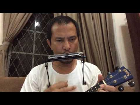 Everybody's changing - Keane. Ukulele+harmonica cover