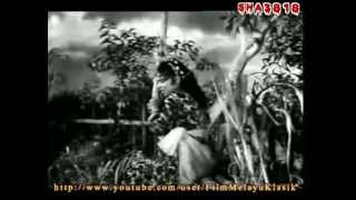 Lanchang Kuning 1962 Full Movie
