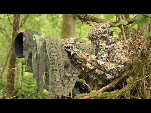 BIRD PHOTOGRAPHY In The Forest | Wildlife Photography Behind The Scenes - Nikon Z7, Ftz, Camouflage