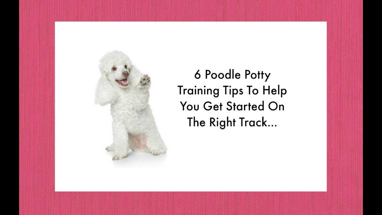 free potty training