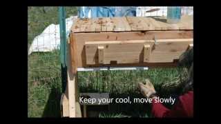 Building A Top Bar Hive