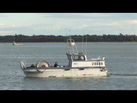COMMERCIAL FISHING Fraser River Canada