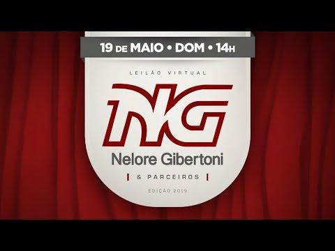 Lote 01   Rebeca FIV Giber   GIBE 1393 Copy