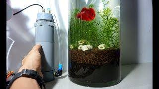 Hướng dẫn tự chế bộ lọc ngoài mini cho bể cá thủy sinh đơn giản tại nhà