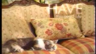 Havertys furniture commercial kids & pets