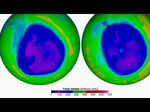 Ozone Depletion And More