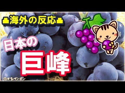 日本びいきの外国人ほっこり和む話!