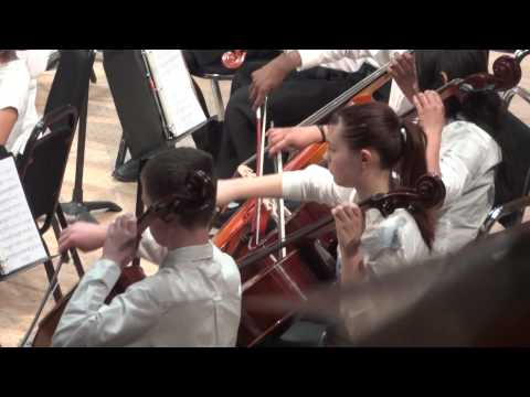Avatar, by Doug Spata, Intermediate Orchestra, DPS Honors Strings Festival 2015