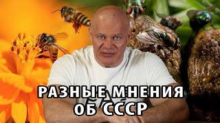 Разное отношение к СССР на наглядном примере.