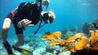 Aruba Bonaire Curacao - Reisen mit Karibiksport
