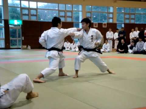 Download Karate Training Videos