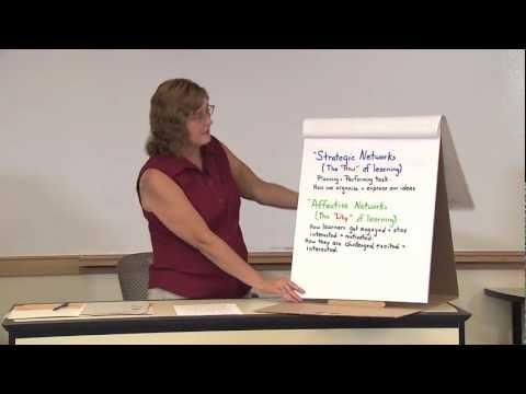 Learning Effectiveness Program Tutor Training