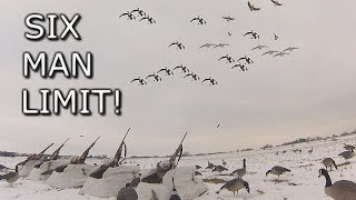 Six Man Goose Limit!!! | Late Season Cornfield Hunt