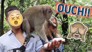 MONKEY ACCIDENT IN BALI | Rei & Migy