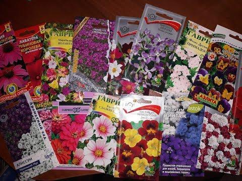 Вопрос: Какие из цветов можно посадить в открытый грунт в марте?