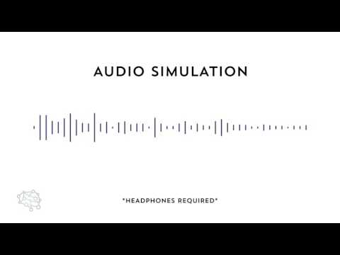 Auditory Processing Disorder Simulation
