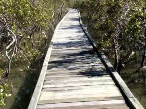 Walking The Boardwalk - Coffs Harbour.