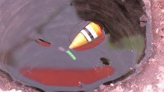 Подъём поплавка один за другим Не успеваю на две удочки Зимняя рыбалка 2021