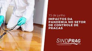 Impactos da Pandemia no setor de controle de pragas