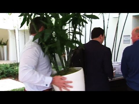 Gotta See It: Bergevin escapes media by hiding behind plant