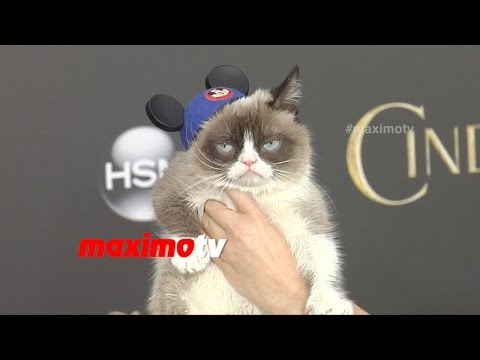 "Grumpy Cat Was Asked to Smile...Yeah, Right! ""Cinderella"" World Premiere Red Carpet"
