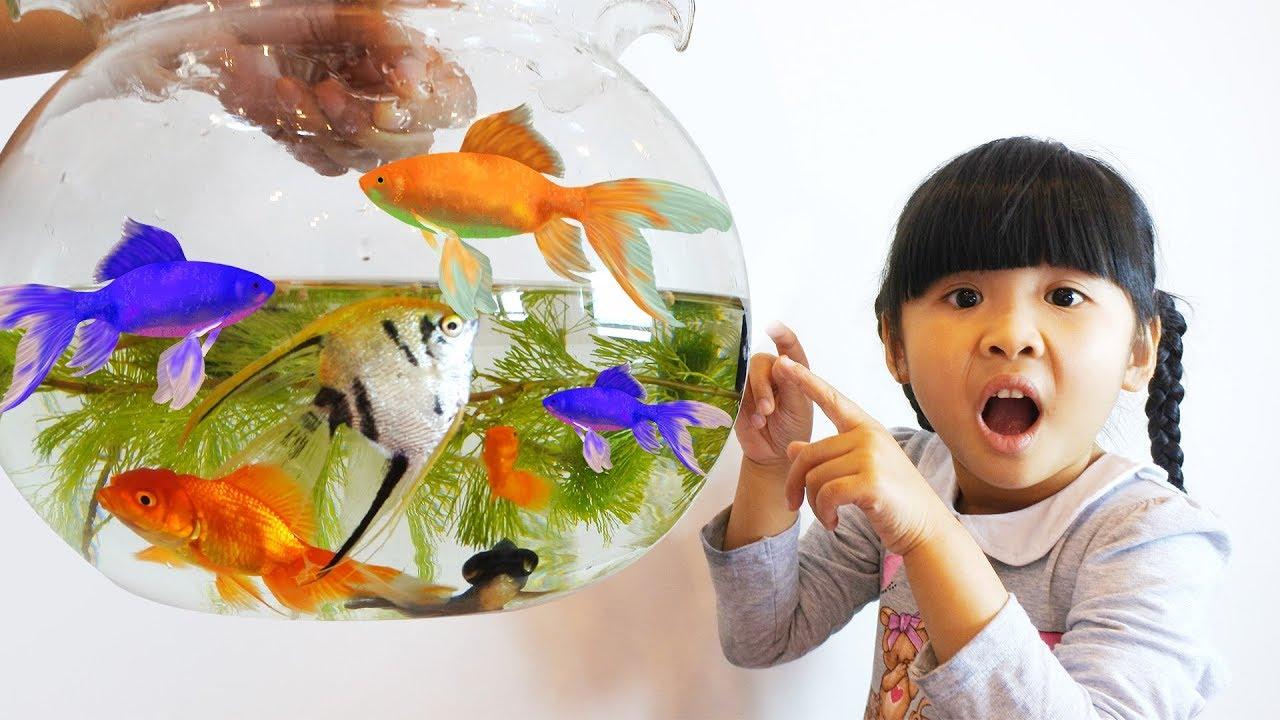 Trò chơi làm bể nuôi con cá thần tiên và con cá chọi ♥ Bé Bún – Bé Bắp ♥
