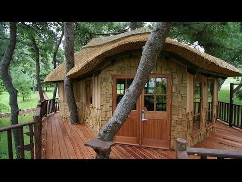 Fant sticas casas na rvore youtube - Casa sugli alberi ...