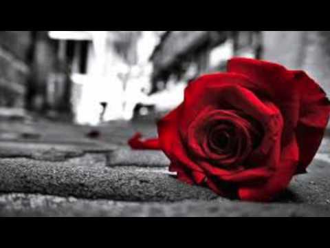 Tell Him - Celine Dion & Barbra Streisand (Cover By Hülya)