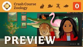 🐌 Crash Course Zoology Preview