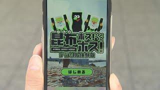 【HTBニュース】利尻昆布漁解禁 コンブ干しゲーム登場