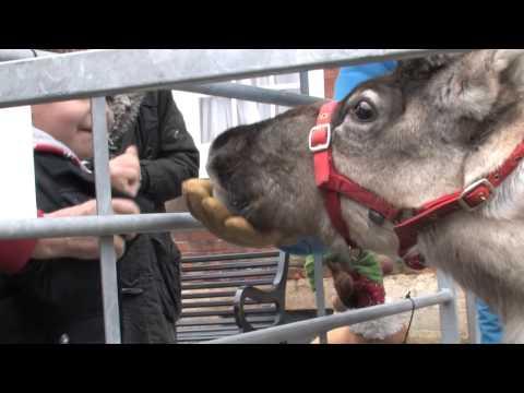 Abingdon Xmas Extravaganza 2012 Highlights