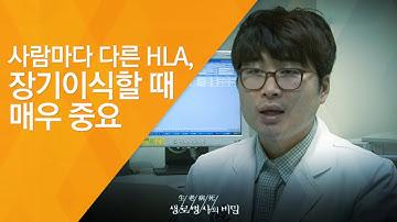 사람마다 다른 HLA, 장기이식할 때 매우 중요 - (20120407_407회 방송)_생명 연장의 희망, 생체장기이식