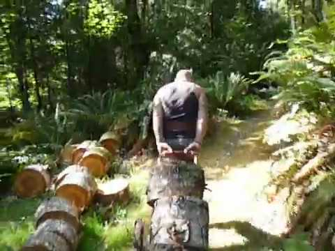 Working Out With Firewood