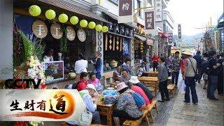 《生财有道》 美味中国系列——云南昆明:春城美味四时新 20190104 | CCTV财经