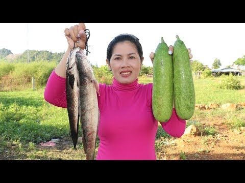 Awesome Cooking Fish W/ Wax gourd  Beautiful Girl Cooking – Cook Fish Recipe – Village Food Factory