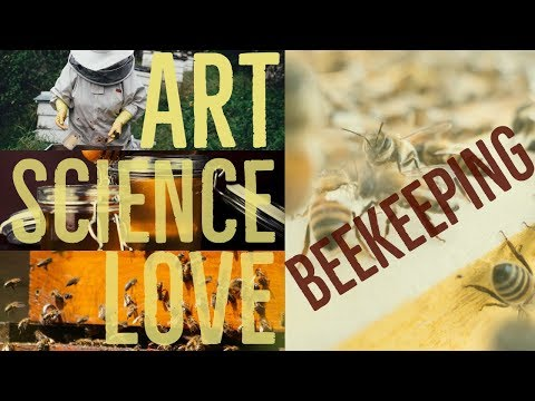 Beekeeping - Working A Hive