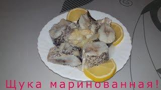 Щука маринованная ! Простой рецепт щуки для домашнего приготовления в масле!